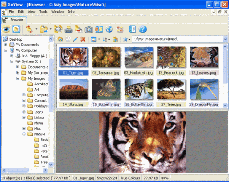 18 Best Free Image Viewer Software