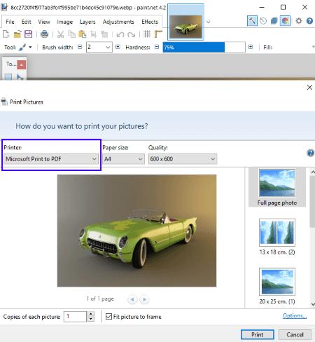 WebP to PDF Converter Software